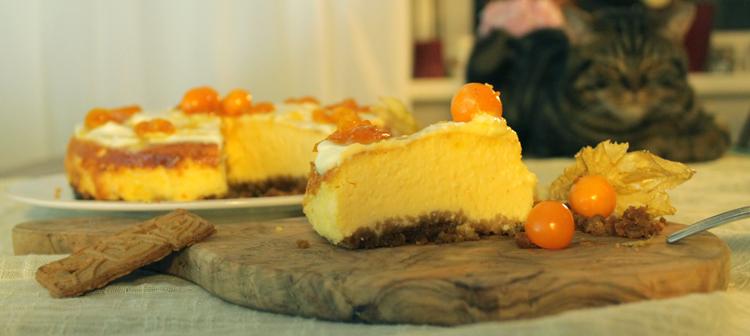 cheesecake-beitrag